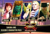 Street Fighter V - Season 3 Character Pass Steam CD Key