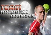 Handball Manager: TEAM Steam CD Key
