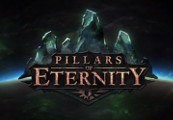 Pillars of Eternity Edition Hero RU VPN Required Clé Steam