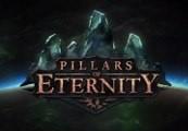 Pillars of Eternity Steam CD Key