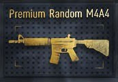 CS:GO Premium Random M4A4 Skin | Kinguin Case