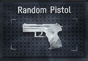 CS:GO Premium Random Pistol Skin| Kinguin Case