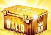 Halid Arsajev Premium CS:GO Case