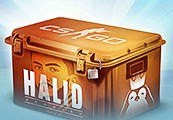 Halid Arsajev CS:GO Case