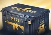 CS:GO Random M4A4 Skin | Kinguin Case