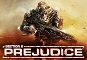 Section 8: Prejudice Steam CD Key