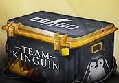 Team Kinguin CS:GO Case