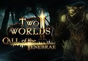 Two Worlds II -  Call of the Tenebrae DLC Steam CD Key