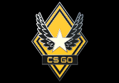 CS:GO - Series 1 - Victory Collectible Pin