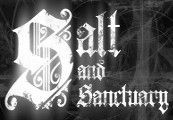 Salt and Sanctuary Steam Gift