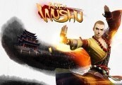 Age of Wushu Warrior's Pack Key