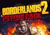 Borderlands 2 + Psycho Pack DLC Steam CD Key