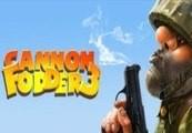 Cannon Fodder 3 Steam Gift