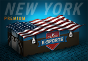 CS:GO Esports New York Premium Case