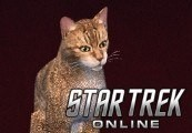 Star Trek Online - Orange Tabby Cat Digital Download CD Key