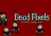 Dead Pixels Steam CD Key