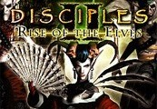Disciples II: Rise of the Elves Steam Gift