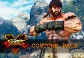 Street Fighter V - Costume Pack DLC EU PS4 CD Key