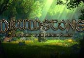 Druidstone: The Secret of the Menhir Forest Steam CD Key
