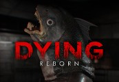 DYING: Reborn Steam CD Key