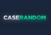 Caserandom.com $100 USD Pay Code for CS:GO cases