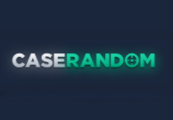 Caserandom.com $500 USD Pay Code for CS:GO cases
