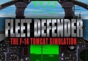 Fleet Defender: The F-14 Tomcat Simulation Steam CD Key