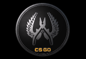 CS:GO - Series 1 - Guardian Elite Collectible Pin
