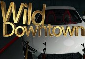 Wild Downtown Steam CD Key
