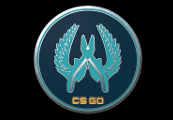 CS:GO - Series 1 - Guardian Collectible Pin