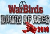 WarBirds Dawn of Aces Steam CD Key