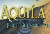 Aquila Bird Flight Simulator Steam CD Key