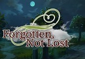 Forgotten, Not Lost Steam CD Key