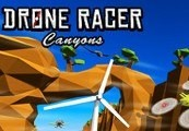 Drone Racer: Canyons Steam CD Key