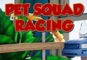 Pet Squad Racing Steam CD Key