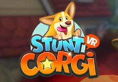 Stunt Corgi VR Steam CD Key