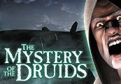 The Mystery of the Druids Steam CD Key