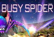 busy spider Steam CD Key