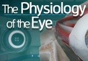 The Physiology of the Eye Steam CD Key