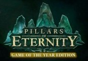 Pillars of Eternity Game of the Year Edition Steam CD Key