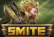 SMITE - Artemis & Stalker Skin CD Key