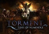 Torment: Tides of Numenera EU Steam CD Key
