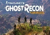 Tom Clancy's Ghost Recon Wildlands US PS4 CD Key