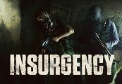 Insurgency ASIA Steam CD Key