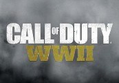 Call of Duty: WWII RU VPN Activated (EU Region 3) Steam CD Key