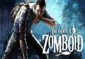 Project Zomboid RU VPN Required Steam Gift