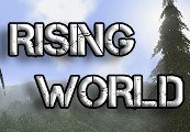Rising World RU VPN Required Steam Gift