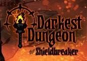 Darkest Dungeon - The Shieldbreaker DLC Steam CD Key