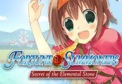 Fortune Summoners Steam Gift