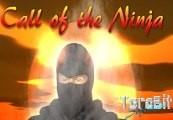 Call of the Ninja! Steam CD Key